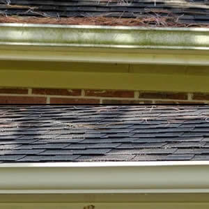 Gutter Cleaning Services near me Houston/La Porte, TX