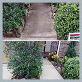 entry-sidewalk-power-washing-01